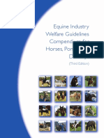 equine-welfare guidelines