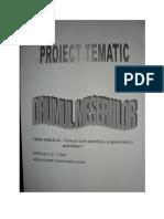 Proiect Tematic Drumul Meseriilor