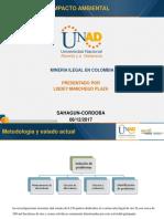 Sustentacion Del Proyecto-Lisdey Manchego