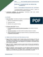 Tema 7 - Aprendizaje y Cognición en Las Áreas Del Currículo