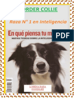 LIBRO+BORDER+COLLIE.pdf