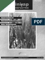 Impacto Economico Del Mejoramiento Genetico de La Cebada en Mexico Variedad Esperanza No.20