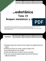PTema23