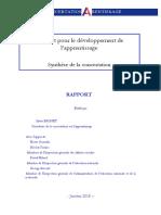 Rapport Concertation Apprentissage 30-01-2018