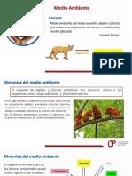 Resumen Semana 01.pdf