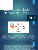 Sistema Manejador de Base de Datos
