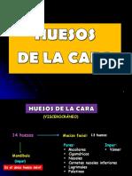 HUESOS DE LA CARA.pptx
