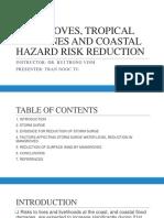 Storm Surge Warning Mitigation Adaptation