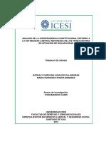 Modelo Analisis Jurisprudencia 2015