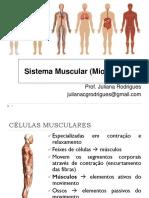 Aula 2 - Sistema Muscular