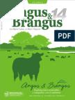 Revista Angus y Brangus Edición 14