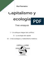 Roi_Ferreiro_-_Capitalismo_y_ecologia_(2009).pdf