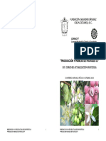 PRODUCCION Y MANEJO DE FRUTALES II.pdf