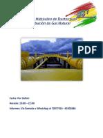 Curso de Redes de Gas Natural