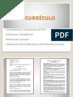 presentacion-curriculo-integrada