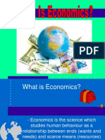 260416421 What is Economics Ppt