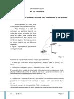 F11-AL 1.1 - Queda Livre