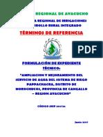 2.-TERMINOS-DE-REFERENCIA-PAPACHACRA.docx