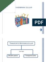 Tansporte_membranal
