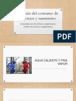 Analisis Del Consumo de Servicios y Suministro