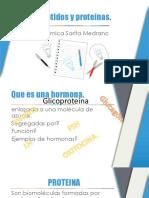 Peptidos y Proteínas
