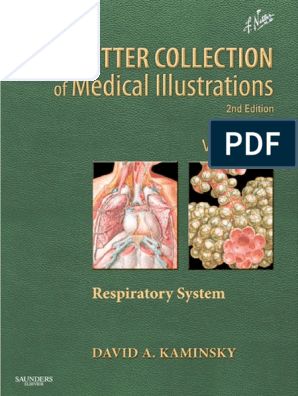 Netter Respiratory System Pdf Doctor Of Medicine Pulmonology Aneurysm Suprarenal Sort With Self Contained Nonflow Limiting Dissertion Flap