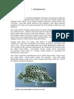 Proposal Teluk Mandeh