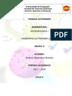Heamophilus Parainfluenzae