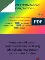 SENMOR 2