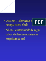 09 La Placenta