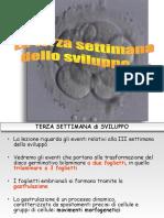 Lez 7_Terza Settimana Embriologia_Medicina
