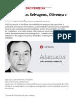 A Espanha, As Selvagens, Olivença e Etc - Portugal - SÁBADO