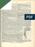 a8cadf2e75 revai17_2.pdf