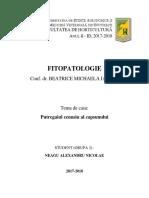 Referat Fitopatologie - An 2 Sem 1 Horticultura