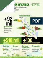 Produccion Organica 2016 - Peru - Infografia