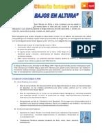06 SBC Trabajos en Altura.pdf