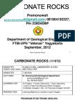 Carbonate Rocks-1.pdf