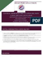 Hidroelectrica Cañon Del Pato