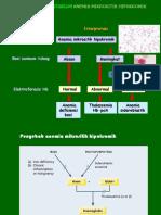 5b. Algoritme Diagnosis Anemia