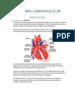 Seminario de Cardiovascular