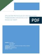 Trabajo de Aplicación Protocolos de Vigilancia Para Trabajadores Expuestos a Factores de Riesgo de Trastornos Musculoesqueléticos de Extremidades Superiores Relacionados Con El Trabajo