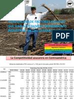 PRESENTACION FINAL Principales factores que afectan el rendimiento agricola e industrial.pdf