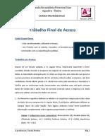 Trabalho Final de Microsoft Access