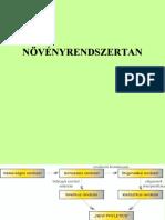 Ketszikuek1.pdf