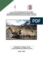101950828-Diagnostico-Nacion-Qero-Cusco-Peru-2005.doc