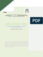 Vivanco Arrona_Investigación de Campo
