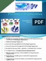 C 1 Psicologia Organizativa 2