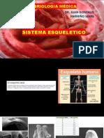 Hueso Embrio