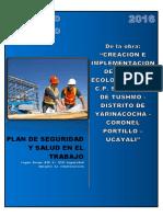 Plan de Seguridad y Salud en El Trabajo (Consorcio Vivero)