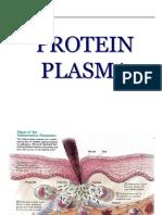 Protein Plasma